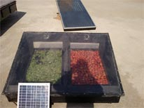 Solar Vegetable Dryer